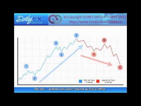 Форекс оптим сколько можно заработать на форексе со 100 долларов за месяц