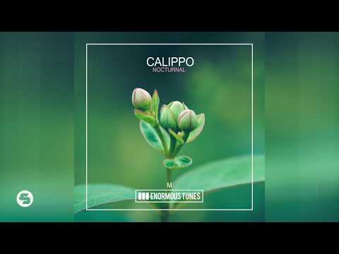 Calippo - Nocturnal