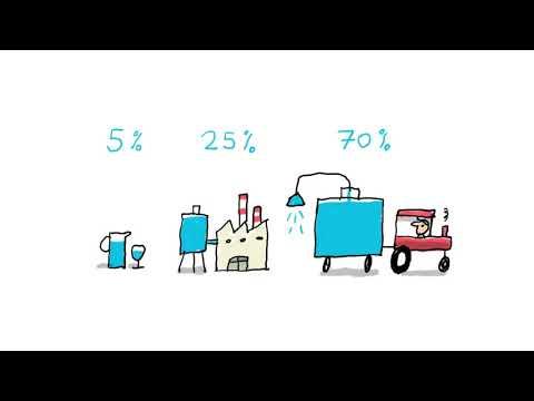 Pourquoi n'y a-t-il pas assez d'eau potable dans le monde ? (EP. 706) - 1 jour, 1 question