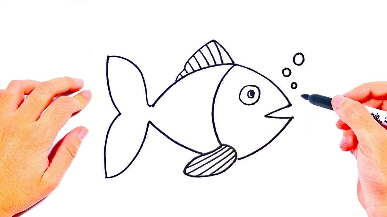 How To Draw A Fish Step By Step Drawings Tutorials For Kids Youtube