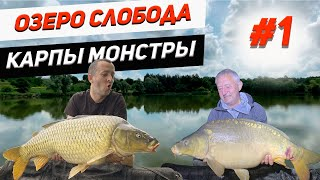 Озеро Слобода Ловля карпа монстров Ч1