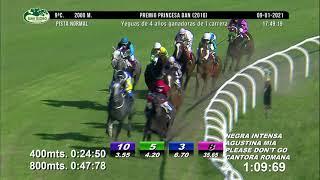 Vidéo de la course PMU PRINCESA DAN 2016