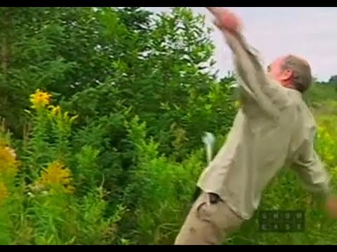 The Falls Of Jim Lahey Part 1 Mikelosm Video Free Music Videos