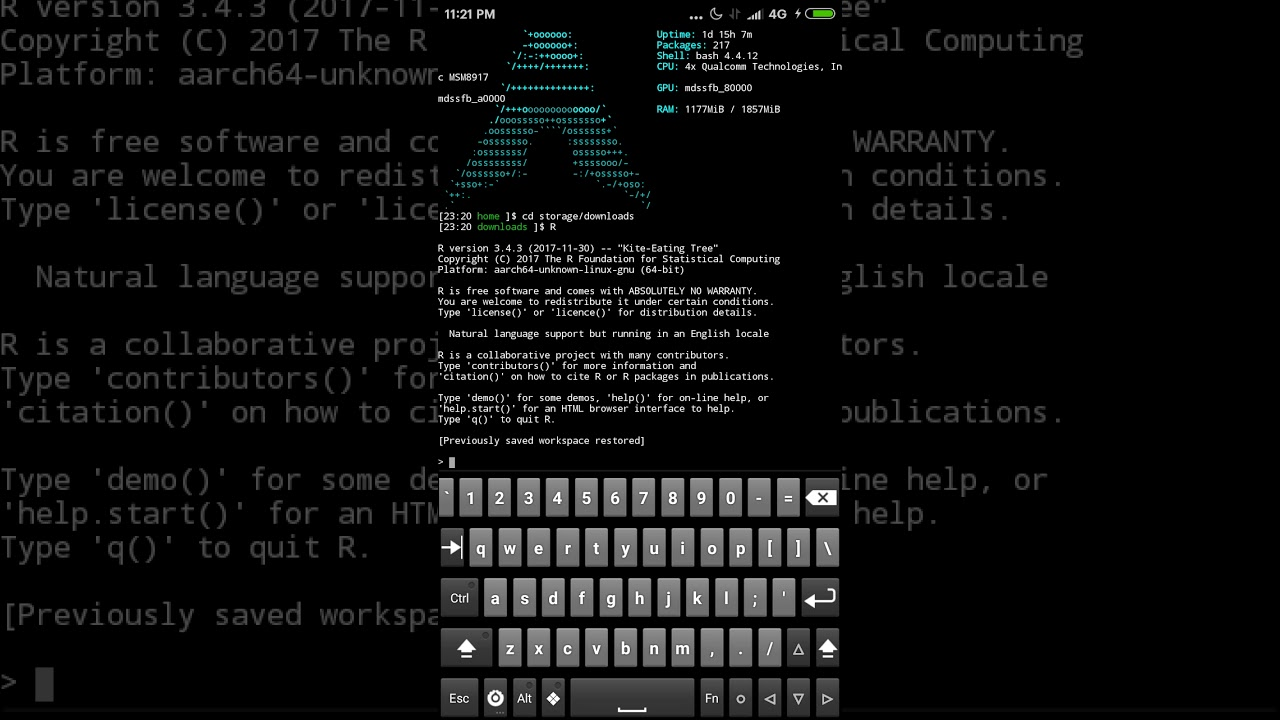 R running in Arch Linux on Android Phone via termux