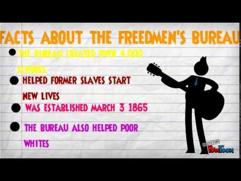 The Freedman