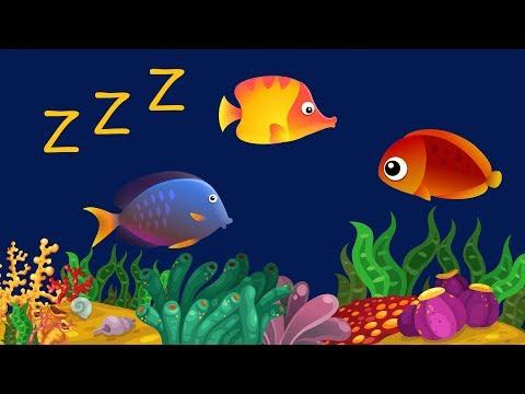 Música Para Bebê Dormir com Relaxante Som de Água ♫ ❤ Animação com Peixes