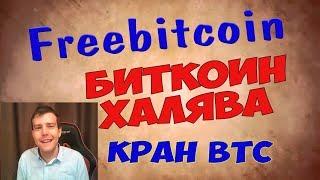 Биткоин Кран Freebitco in - халявные Биткоины и прибыльная лотерея