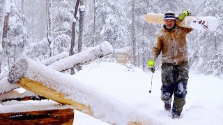 Wilderness Survival with my Dog   Solo Bushcraft, Woodworking Hand Tools, Axe, Log Cabin Loft