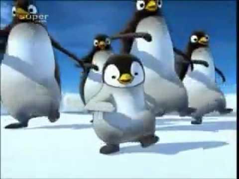 Những chú chim cánh cụt đáng yêu