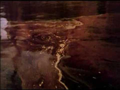 Lake Erie Pollution Problem 1970