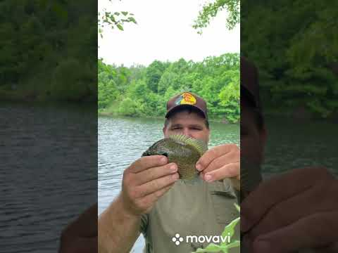 Fishing A New Pond In The Pocono Mountains