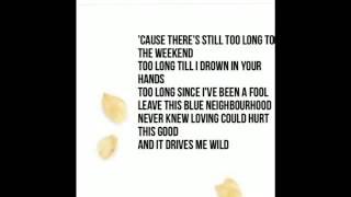WILD-Troye sivan lyrics