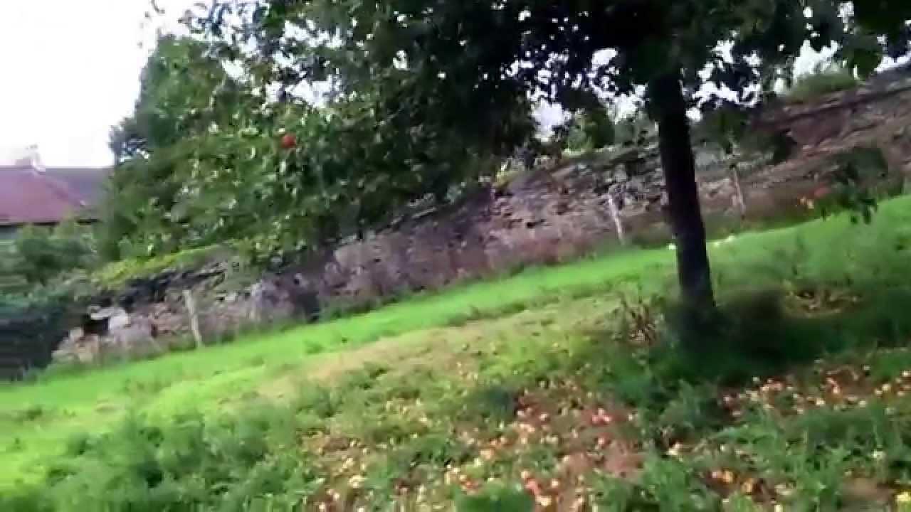 Le Jardin De Grand Mere le jardin de ma grand mère - youtube