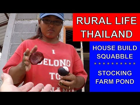 BUILDING A HOUSE IN THAILAND & STOCKING THAI FISH POND Rural life Thailand Homestead THAI VLOG