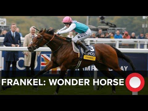 Frankel: Wonder horse