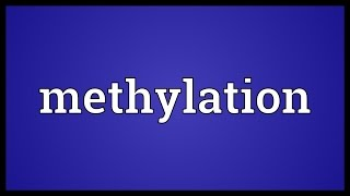 Methylation Meaning