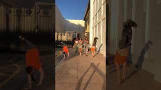 Picking up hot girls / TwinsFromRussia tiktok #shorts