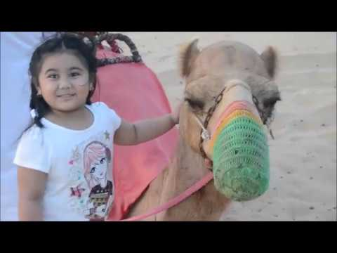 Desert Safari | UAE National Holiday