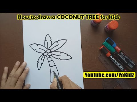 How to draw COCONUT TREE for kids