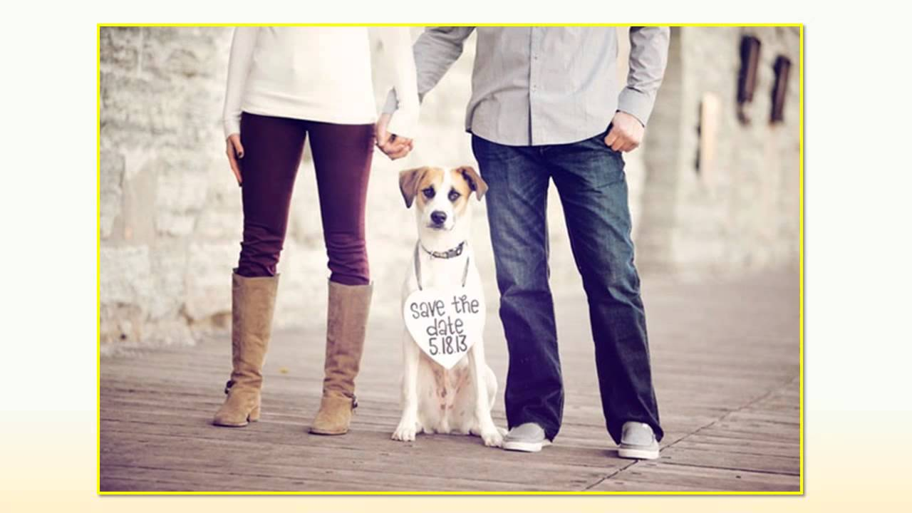 12 save the date ideas with pets youtube 12 save the date ideas with pets junglespirit Choice Image