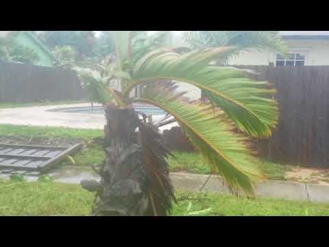 West palm beach demolished by Irma