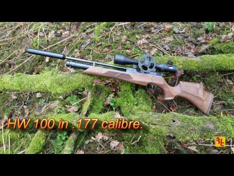 Pest Control with Air Rifles - Squirrel Shooting - Lethal Lee