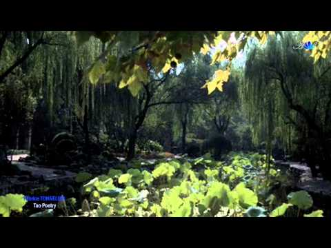 Tao Poetry - Relaxing lounge music - FABRICE TONNELLIER