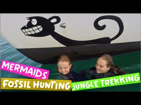 Sea Monkey Broadcasting News - Mermaids, Fossils and Jungle Trekking