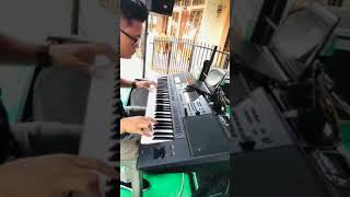 HODO NA TARPILLIT - Cover Ledy sibarani ( Keyboard cam )