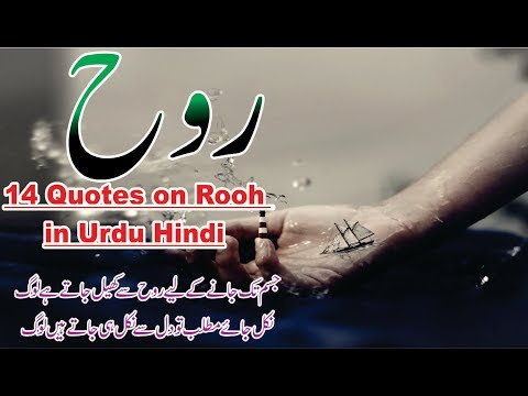 Rooh Best Quotes And Poetry In Urdu Hindi With Voice And Images || Golden Word Collection