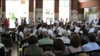 Danzon nº 2 - Arturo Márquez - Ins. Juan Villodre