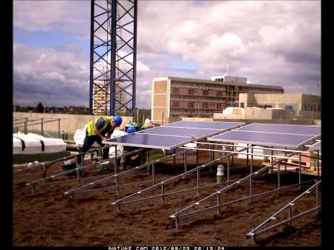 Solar Green roof frame install
