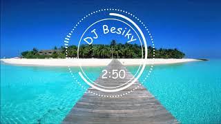 CHILLI  - TVOJ HLAS ( DJ Besiky chill house remix )