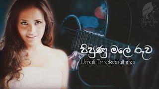 Pipunu Male Ruwa (පිපුණු මලේ රුව) Umali Thilakarathna | Live Cover Thumbnail