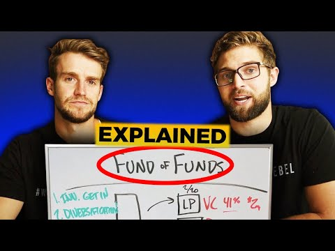 How Do Fund of Funds Work? (Explained)