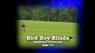 BB Blinds, aka Bird Boy Blinds
