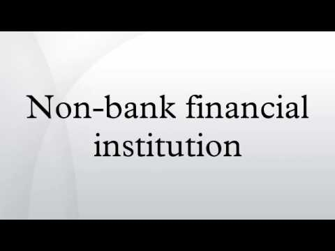 Non-bank financial institution
