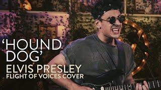 Hound Dog - Elvis Presley (Flight of Voices feat. Ash Minor)