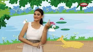 Nach Re Mora Action Song | Marathi Rhymes For Children | Marathi Gani | Bal geet | Action Songs