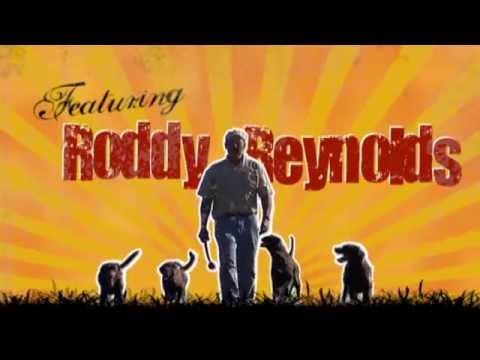 Roddy Dogs - Advanced Dog Obedience Training