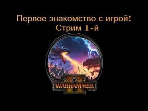 Total War: Warhammer II - первое знакомство с игрой, стрим 1-й