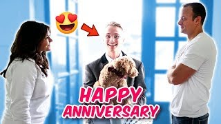 i-got-you-a-puppy-for-our-anniversary-not-the-reaction-i-was-thinking-i-d-get-the-leroys