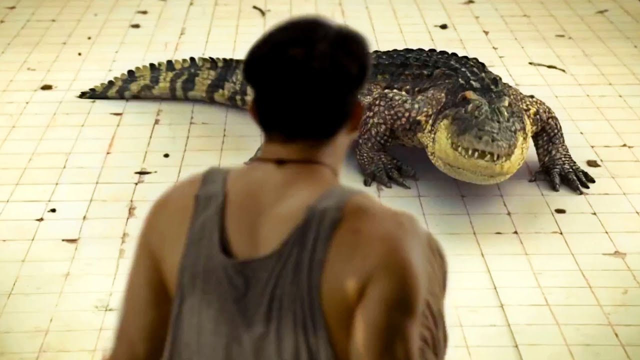 Download Man Trapped In 6-m Pool With A Crocodile For 7 Days