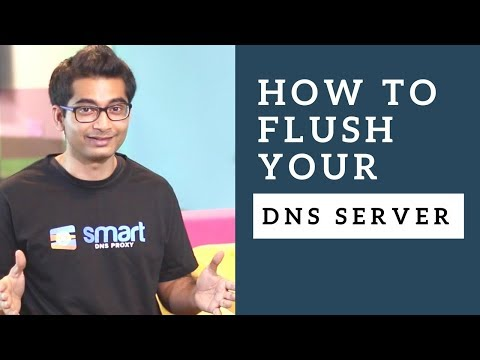 How to Flush DNS Cache on Windows, macOS, Android, iOS