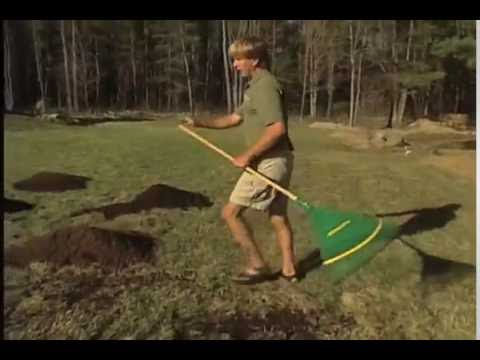 a7dab14a6a How to Topdress Your Lawn with Compost - YouTube