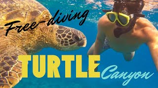 Free diving in Turtle Canyon