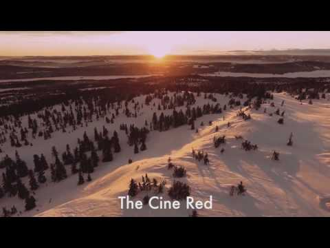 The Cine Pack Video LUTs by Martin Timmer