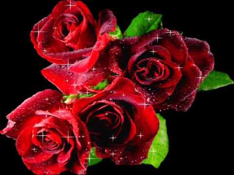 que bonitas flores - YouTube