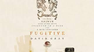 David Gray - Jitterbug (Official Audio)