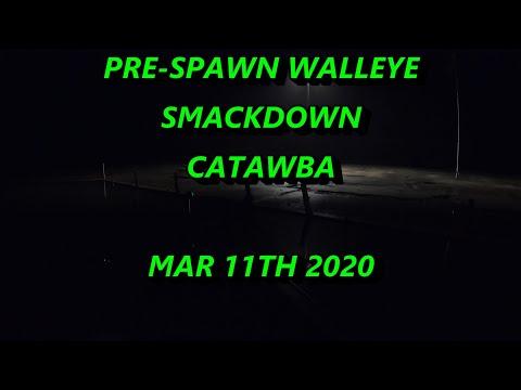 PRE-SPAWN WALLEYE SMACKDOWN CATAWBA STATE PARK LAKE ERIE OHIO PORT CLINTON